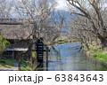 大王わさび農場の水車小屋 長野県安曇野市 63843643