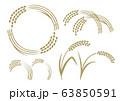 稲いろいろ 63850591