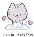 手洗いネコと菌 63857739