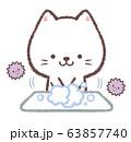 手洗い白ネコと菌 63857740