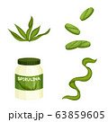 Vector illustration of spirulina and seaweed symbol. Collection of spirulina and vegan vector icon for stock. 63859605