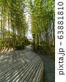 修禅寺 竹林の小径 63881810
