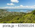ニュージーランド ウェリントン ライト・ヒル・フォートレスからの街並み 63900104