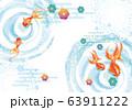 金魚:金魚 金魚すくい 泳ぐ お祭り 屋台 店 出店 淡水魚 金魚鉢 アクアリウム 63911222