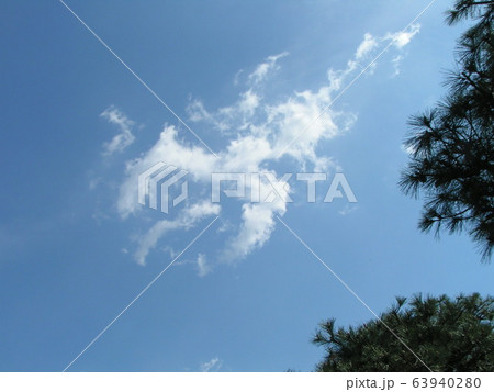 3月の青い空と白い雲 63940280