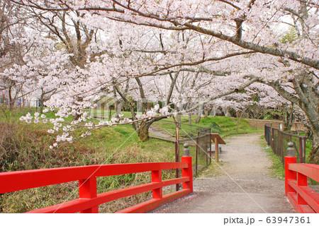 水間公園・愛染橋 63947361