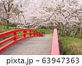 水間公園・愛染橋 63947363