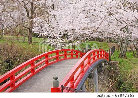 水間公園・愛染橋 63947368