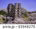 【静岡県】満開の桜に包まれた、韮山反射炉 63948270