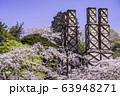 【静岡県】満開の桜に包まれた、韮山反射炉 63948271