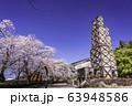 【静岡県】桜咲いた、韮山反射炉 63948586