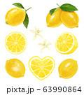 レモンの素材 63990864