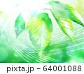 新緑 64001088