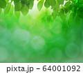 新緑 64001092