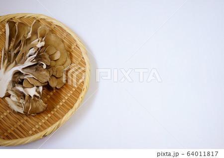 丸いザルに入った舞茸とコピースペースのある白背景の写真 64011817