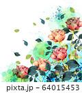 薔薇水彩画 64015453