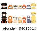 マスクをした犬と猫のボーダーセット 64039018