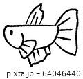 メスベタ(線画) 64046440