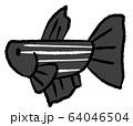 拒否線のあるメスベタ(黒色) 64046504