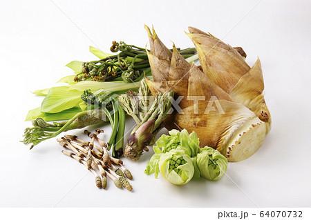 春の山菜 64070732
