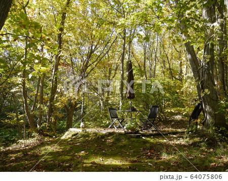 森の中に設置されたテーブルとパラソルのセット 64075806