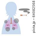 喫煙者(女性)の肺 64082568