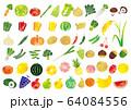 青果水彩アイコン 64084556