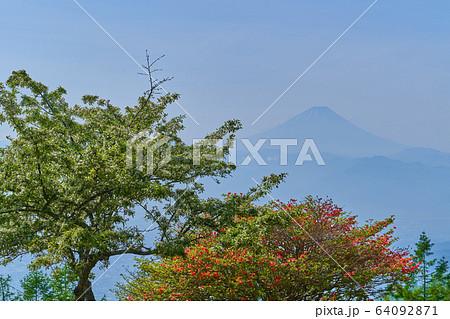 山梨県の甘利山から南東側の富士山眺望 64092871