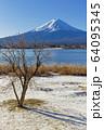 山梨_冬の富士山と残り柿 64095345