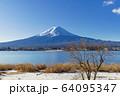 山梨_冬の富士山と残り柿 64095347
