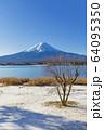 山梨_冬の富士山と残り柿 64095350
