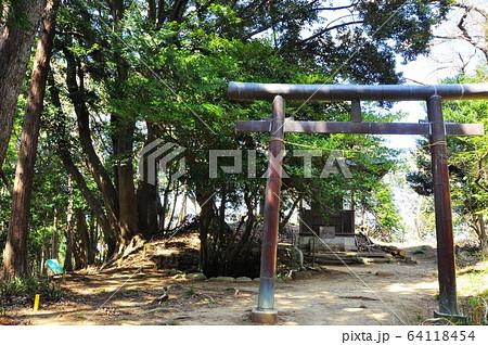神奈川県厚木市 飯山白山森林公園ハイキングコース 白山神社 64118454