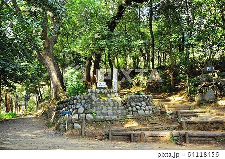 神奈川県厚木市 飯山白山森林公園ハイキングコース 男坂と女坂入口 64118456