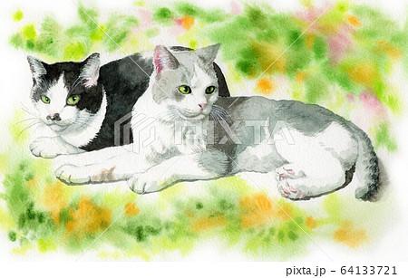 水彩で描いた2匹の猫 64133721