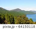 遠方の富士山 64150118