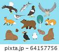 北海道の動物たち1 64157756