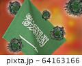 世界中の国々に広がるコロナウイルスのイメージ画像。 64163166
