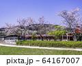 (静岡県)桜咲いた、酪農王国オラッチェ 64167007