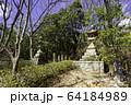城下町龍野 野見宿禰神社 参道 兵庫県たつの市 64184989