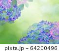 背景-紫陽花-梅雨 64200496
