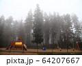 風景 霧 欧州 64207667