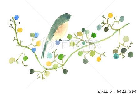 実がついた木の枝にとまる鳥水彩画絵葉書素材 64234594