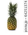 パイナップル(白バック) 64251374