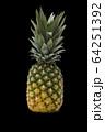 パイナップル(黒背景) 64251392
