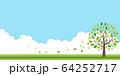 新緑(若葉) 64252717