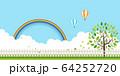 新緑(若葉) 64252720