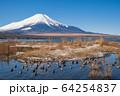 山梨_厳冬の山中湖畔風景 64254837