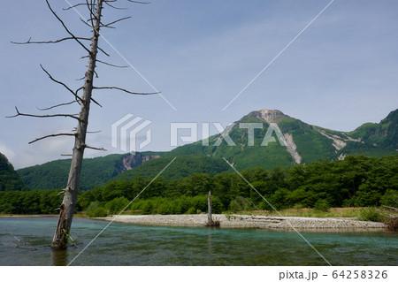 【長野】上高地(梓川から見る焼岳) 64258326