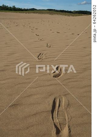 鳥取砂丘の足跡 64262052
