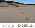 鳥取砂丘の足跡 64263181